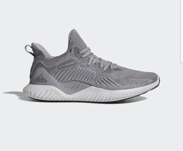 adidas barikada в Кыргызстан: Кроссовки Adidas (alphabounce) оригинал (покупали в США на скидке за