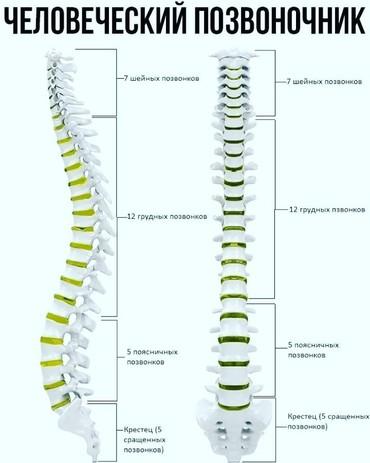 кальций для роста в Кыргызстан: Кальций для роста костей быстро и эффективно без боли легко просто