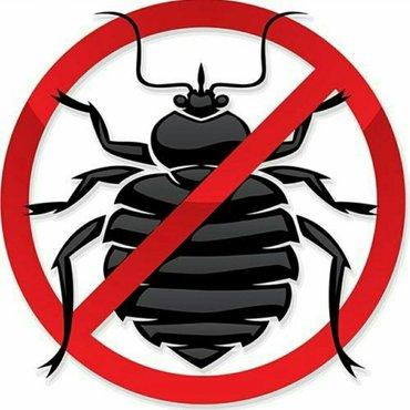 УНИЧТОЖЕНИЕ !!! клопов, тараканов, муравьев и других насекомых.. В ква в Бишкек