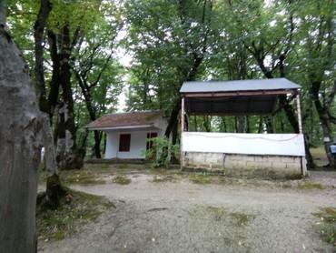 Restoranların, kafelərin satışı - Azərbaycan: Ismayillida 2 hektarda yol kənarı obyekt satılır 60000 manat