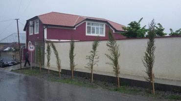 sekide satilan evler 2018 в Азербайджан: Sekide kiraye villa