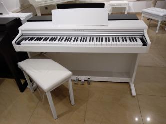 Elektron pianino - Azərbaycan: Elektro Pianino - müxtəlif marka və modellərÇatdırılma və quraşdırılma