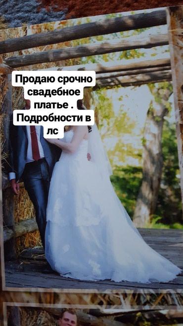 ad-image-48516855