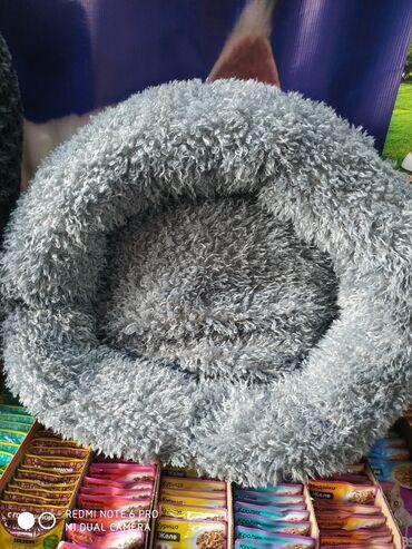 теплые платья для полных в Кыргызстан: Лежаки для кошек и собак. Размер 50*50. Очень мягкие, теплые и уютные