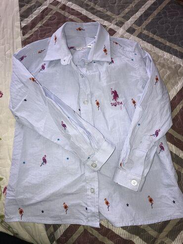 Обмена нет!!! Рубашка Polo оргинал. На 4-5 лет. Состояние идеал