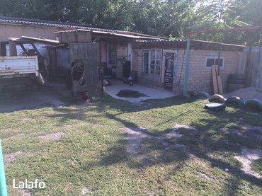 Продаю дом, участок 8 сот, дом 70 кв. м, 5 комнат. Кухня 35 кв. м, пог в Лебединовка