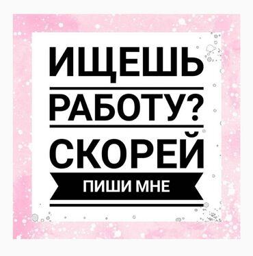 Работа торговый агент - Кыргызстан: Торговый агент. Без опыта. 5/2