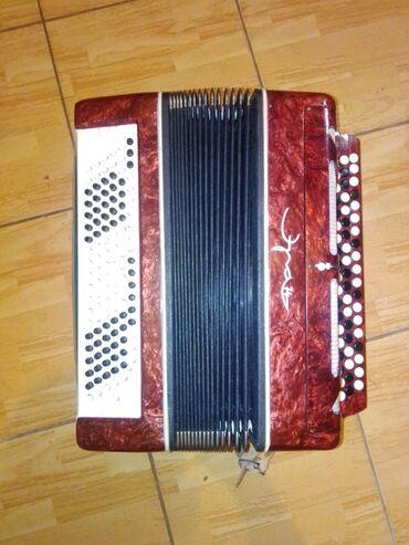 Harmonike | Srbija: Harmonika 120 basova skolskaHarmonika je kao nova nije koriscena jer
