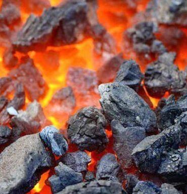 элевит 2 цена бишкек в Кыргызстан: Уголь уголь уголь Шабыркуль Каражыра с доставкой на дом. Уголь