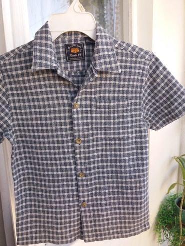 Фирменная рубашечка, чистый хлопок,в плечах 37см 150сом в Бишкек