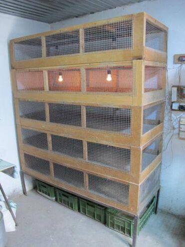 раковина с тумбой бишкек цена в Кыргызстан: Продаю стеллажи для подращивания цыплят до месячного возраста. Размеры