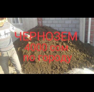 Чернозем плодородный. Перегной в Бишкек