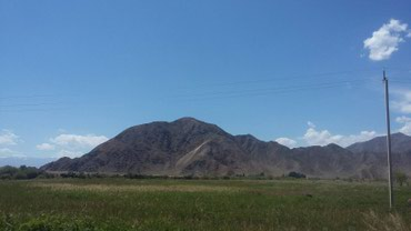 ЧП Алмаз срочно требуются акционеры для расширения бизнеса. в Бишкек