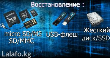 Восстановление любой информации! в Бишкек