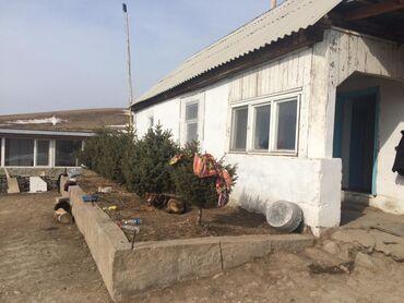 Недвижимость - Дмитриевка: 1 кв. м, Действующий
