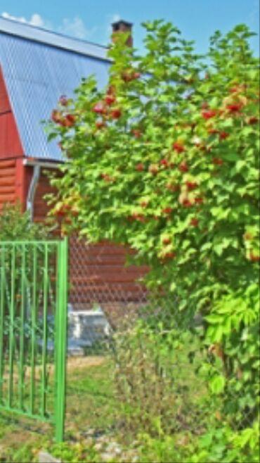 Недвижимость - Горная Маевка: 5 соток, Для строительства, Срочная продажа, Красная книга