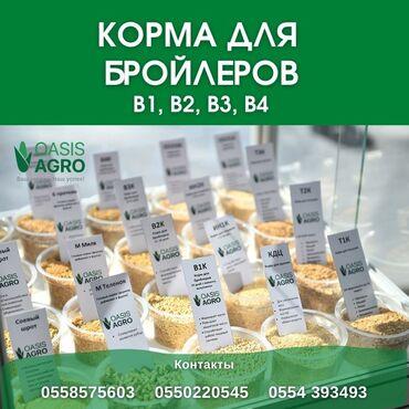 таблетки для набора массы в Кыргызстан: Корм для бройлеровВ1 (с 0 дня по 10-й день)В2 (с 10 дня по 24-й