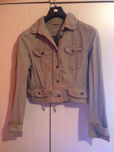 Kratka teksas jaknica, velicina l - Kraljevo