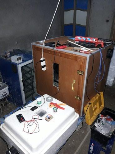 Inkubator temiri. butun nov inkubatorlarin temiri, в Bakı