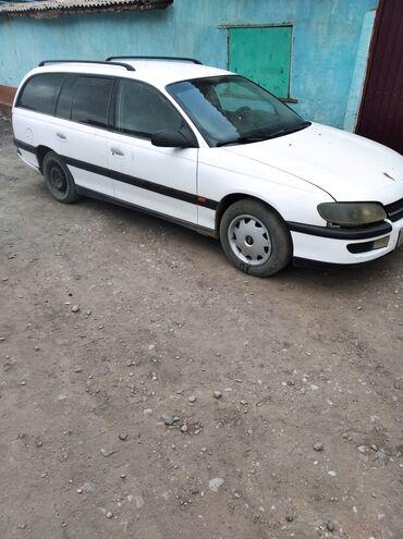45 объявлений: Opel Omega 1993