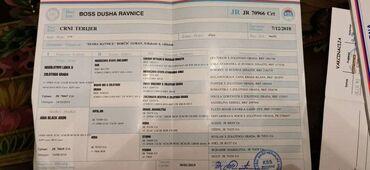 Crni ruski terijerŠtenci vrhunske krvne linije, oštenjeni 27.04.2021