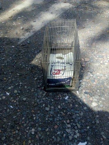 Продаю клетку. размер 50 х 25 х 30.   в Бишкек