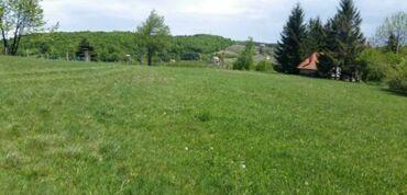 Nekretnine - Srbija: 6 ares, Poljoprivredno zemljište, Vlasnik