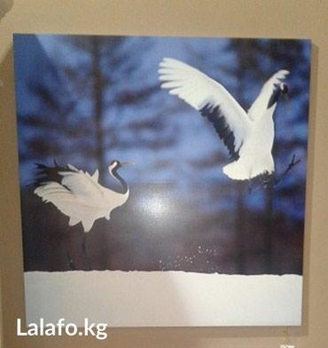 Картина декоративная 60 см х 60 см,на фанерной основе. в Бишкек