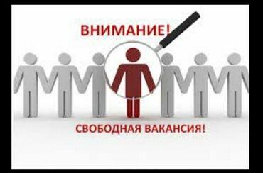 девушки по вызову в бишкеке в Кыргызстан: Помощник. Без опыта. 5/2