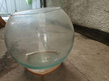 340 объявлений: Продаю круглый аквариум с подставкой, 20 литров, сверху есть небольшая