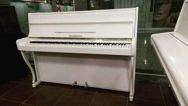 Bakı şəhərində Pianino satılır