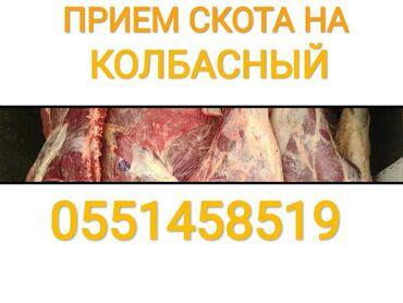 прием макулатуры бишкек адреса в Кыргызстан: Прием СКОТА в любое время в любом виде