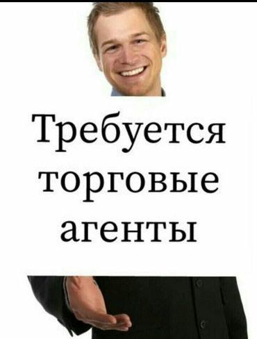 Требуются торговые агенты в Бишкек