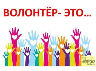 Требуется волонтер в фонд в Бишкек