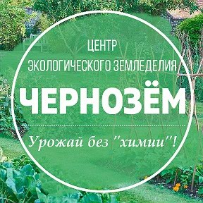 чернозем в Кыргызстан: Чернозем жеткиребиз! Доставим чернозем с горных районов!