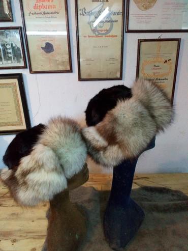 Tatarka od polarne lisice Prirodno krzno nerca i lisice - Sremska Mitrovica