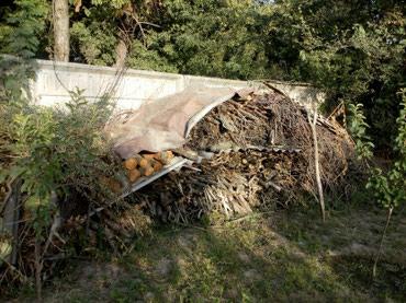 Джалал-абадПродам дрова 10000 сом самовывоз в Джалал-Абад