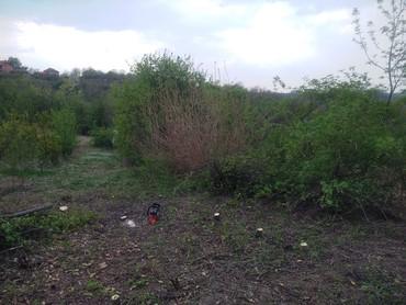Usluge košenja trave i seča drva, povoljno, dolazak isti dan jovica - Belgrade