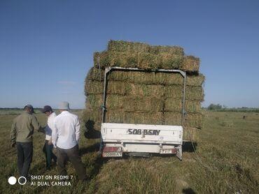 buick le sabre 3 8 at в Кыргызстан: 2.3 кос
