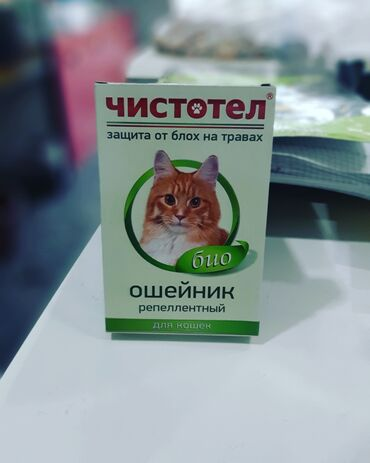pisikler - Azərbaycan: Pisikler ucun bite qarsi xalta