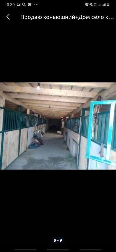 продажа комнаты в Кыргызстан: Срочно Продаю сарай конюшни 15 голов есть навесы отдельно сарай одно