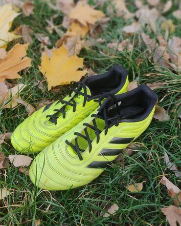 футбольные бутсы бишкек in Кыргызстан | БУТСЫ: Adidas copa 19 оригинал 100% покупали в официальном магазине адидас в