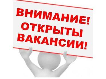 Торговые агенты - Кыргызстан: Торговый агент. 6/1