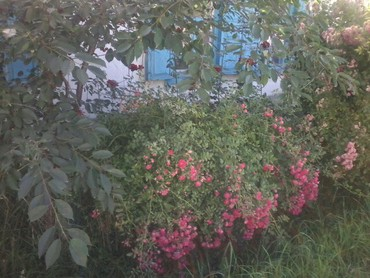 Продажа Дома от собственника: кв. м., 3 комнаты в Каракол