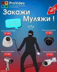 Закажи муляжи камер видеонаблюдения! в Лебединовка