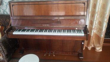 Спорт и хобби - Заря: Пианино, фортепиано