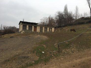 Tovuz şəhərində Tovuz rayon Oksuzlu kendinde yerlesir 1 otagli ev baginda ekser meyve