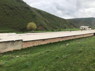 мал-сарай в Кыргызстан: Продаю кошару 1га 15га поздбища, родник, сарай капитальный на 500 голо