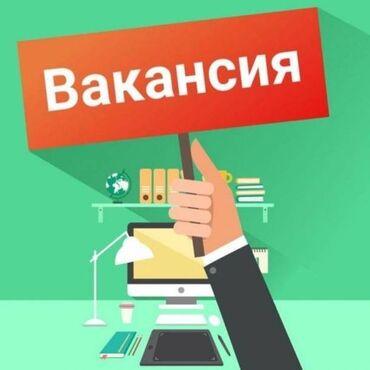 витамины для мужчин бишкек in Кыргызстан | ДОЛГОСРОЧНАЯ АРЕНДА КВАРТИР: Менеджер по продажам. 1-2 года опыта