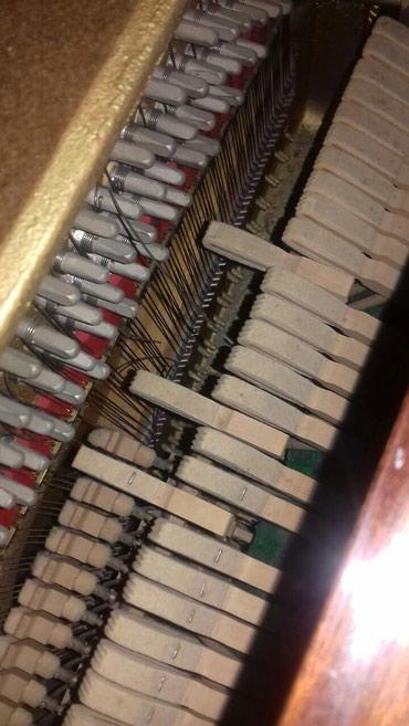 Bakı şəhərində Pianino köklənməsi